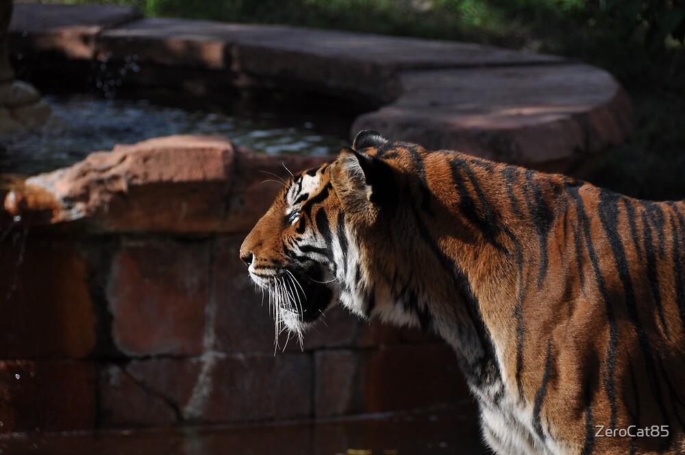 Bengal Tiger Animal Kingdom by ZeroCat85