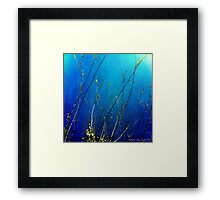 About the Bare Bones Of It Framed Print
