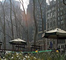 Bryant Park, New York by J Forsyth