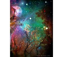 Galactic Trees Photographic Print