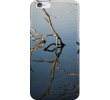 Driftwood at an Early Morning Spring at Lake Burley Griffin in Canberra/ACT/Australia (2) iPhone Case/Skin