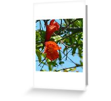 Flowering Tree Greeting Card