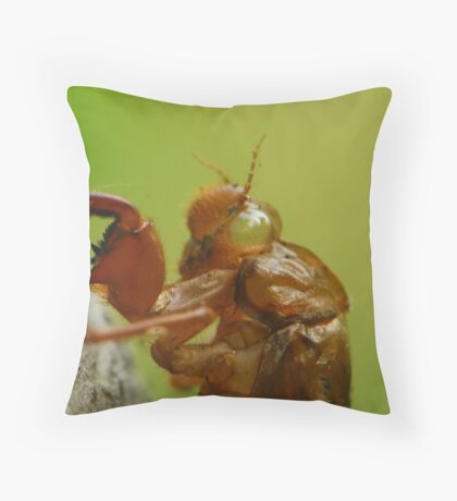 my soul has gone Throw Pillow
