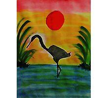Sentinial, Bird series, watercolor Photographic Print