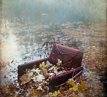 The aquatic club chair by Liliana Morawska