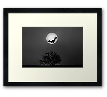 Bat In The Moon Framed Print