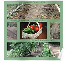 My Vegetable Garden, 2011 Poster