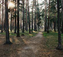 The road  by KatrinKirieshka