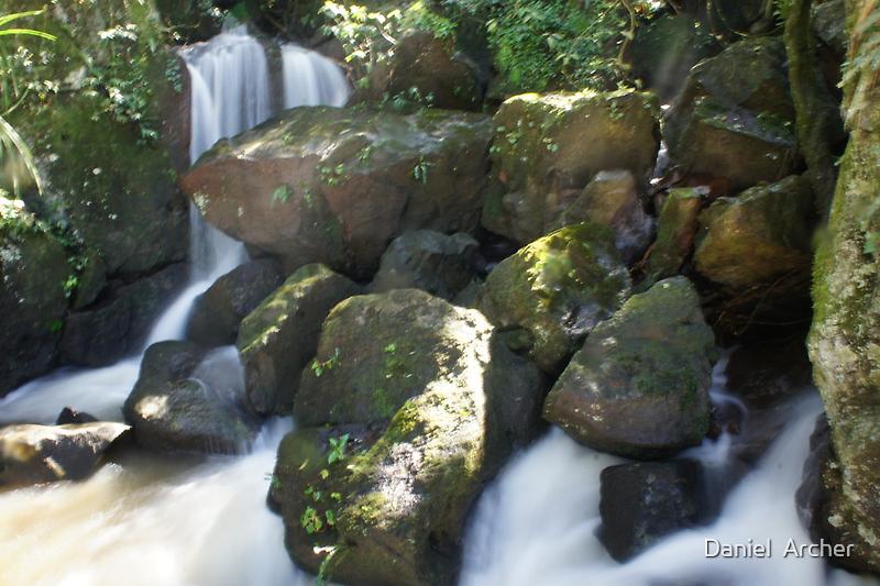 Above Iguassu Falls by Daniel  Archer