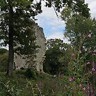ruine et végétation by monk-alainalele