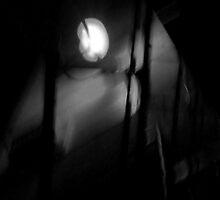 light of the glass moon by marysia wojtaszek