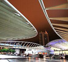 Santiago Calatrava. Gare do Oriente. Lisboa by terezadelpilar~ art & architecture