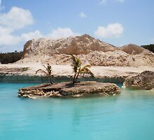 Beautiful Images from the Bahamas by MitsukaiKogun