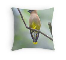 dont you just hate what the humidity does to your feathers?! Throw Pillow