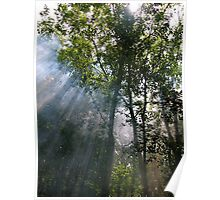 smokey day Poster