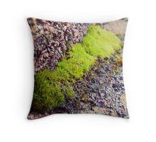 Life Grows in Many Places Throw Pillow