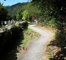 Pathway in Glendalough, Ireland by RosieDawn