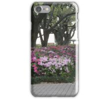 Downtown Landscapes iPhone Case/Skin