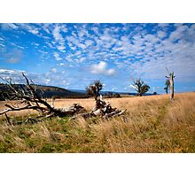Highlands Country Photographic Print