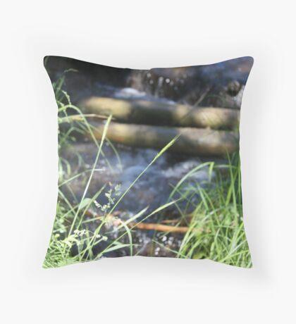 Creek Fall Throw Pillow