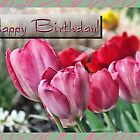 Birthday card - tulips by Kenneth Krolikowski