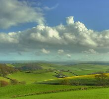 The South Hams by phil hemsley
