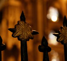 Spikes and Bokeh by Lisa Knechtel