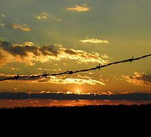 Sunset  and Barbed Wire - Lyman, Maine by MaryinMaine