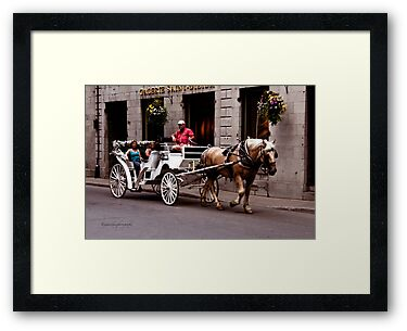 Horse Drawn Carriage - Montreal by Yannik Hay