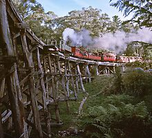 Puffing Billy on Trestle Bridge 198005160019  by Fred Mitchell