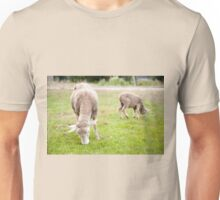 Two sheeps eating grass Unisex T-Shirt