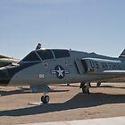 #59-0158 F-106B Delta Dart by Henry Plumley