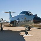 #58-0288 F-101B Voodoo profile by Henry Plumley