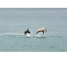 Synchronized Swimming Photographic Print