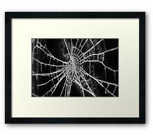 Frosty Winter Web Framed Print