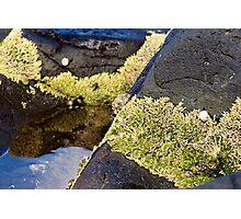 Moss on the rocks Photographic Print