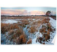 Frosty evening at Brackagh Moss Poster