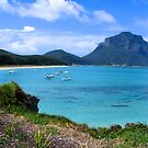 Lord Howe by Tess Vincent