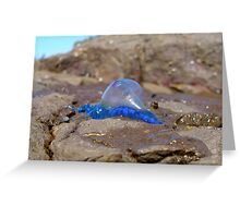 Blue bottle out of water Greeting Card
