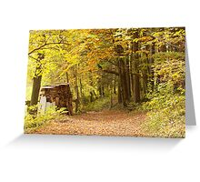 Mystic Path In A Golden Forest  Greeting Card