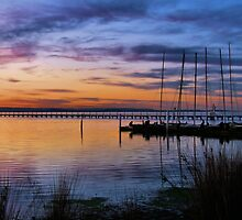 Evening Colours by Nickie