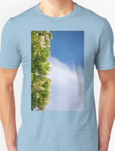 blooming Aesculus tree on blue sky T-Shirt