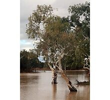 Outback drowned Photographic Print
