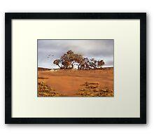 Bush Reds Framed Print