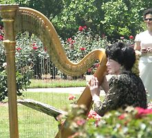 The Harpist Is Playing by camerawoman1