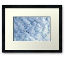 Soar Flock Framed Print