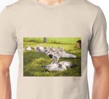 Muscovy Duck farm birds group Unisex T-Shirt