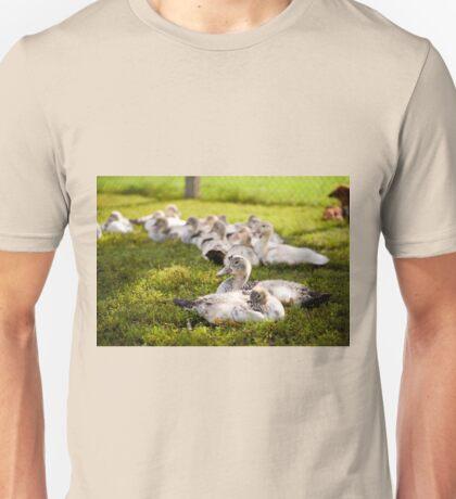 Muscovy Duck farm birds group Unisex T-Shirt