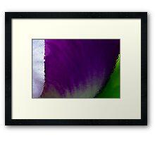 Iris Macro Tricolor Framed Print