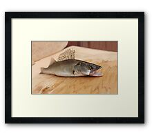 walleye with open mouth Framed Print